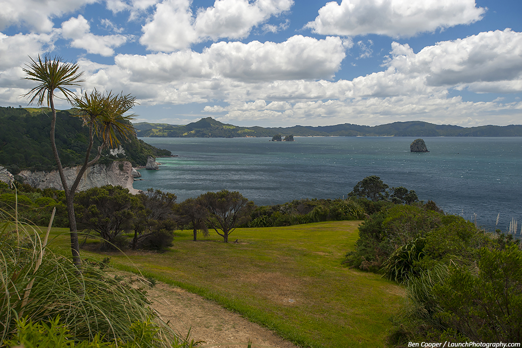 cathedral cove  new zealand photos