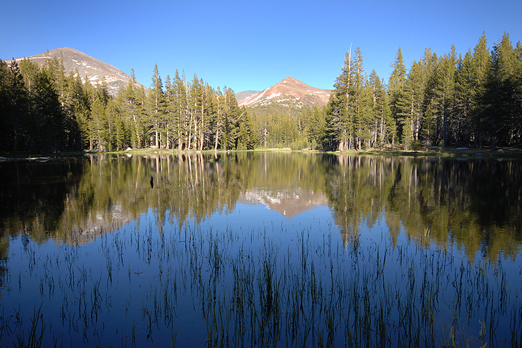 Tuolumne Meadows &...